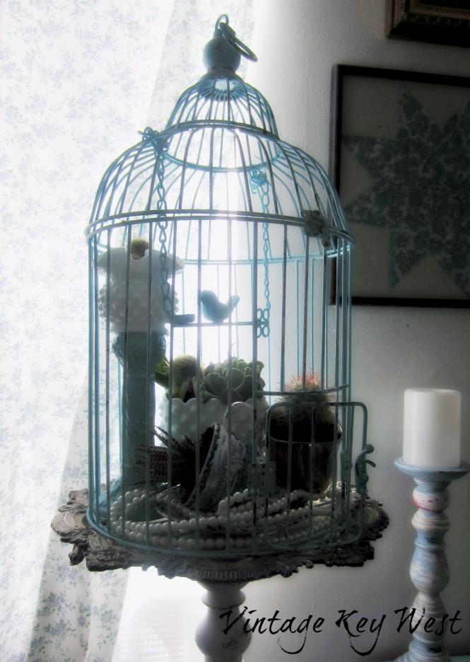 succulent birdcage2