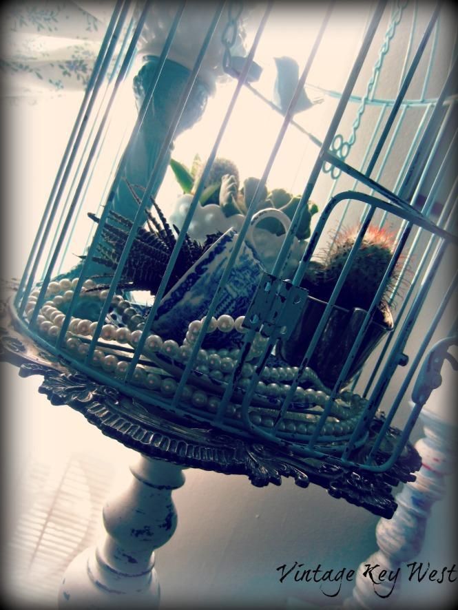 succulentbirdcage